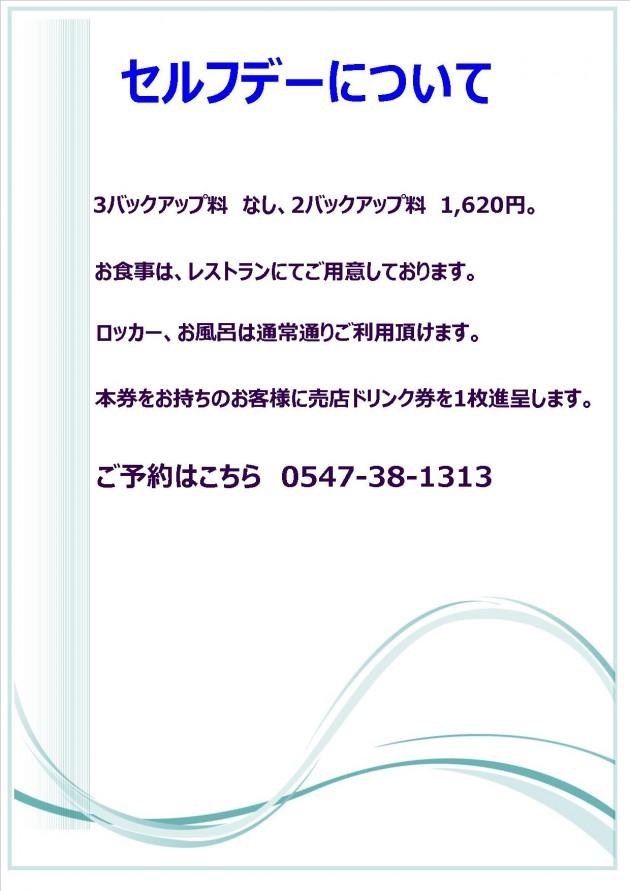 2017.1-セルフデ【ハガキ】 - 裏