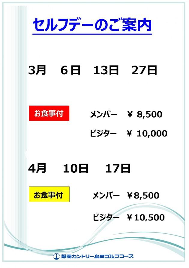2017.3-セルフデ【掲示】