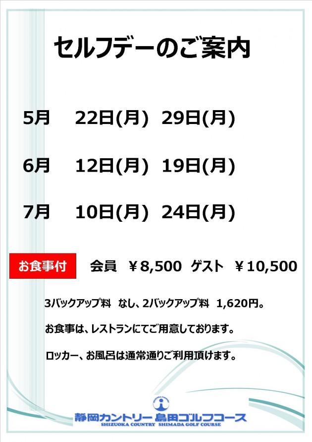 2017.5-7セルフデー【HP用】