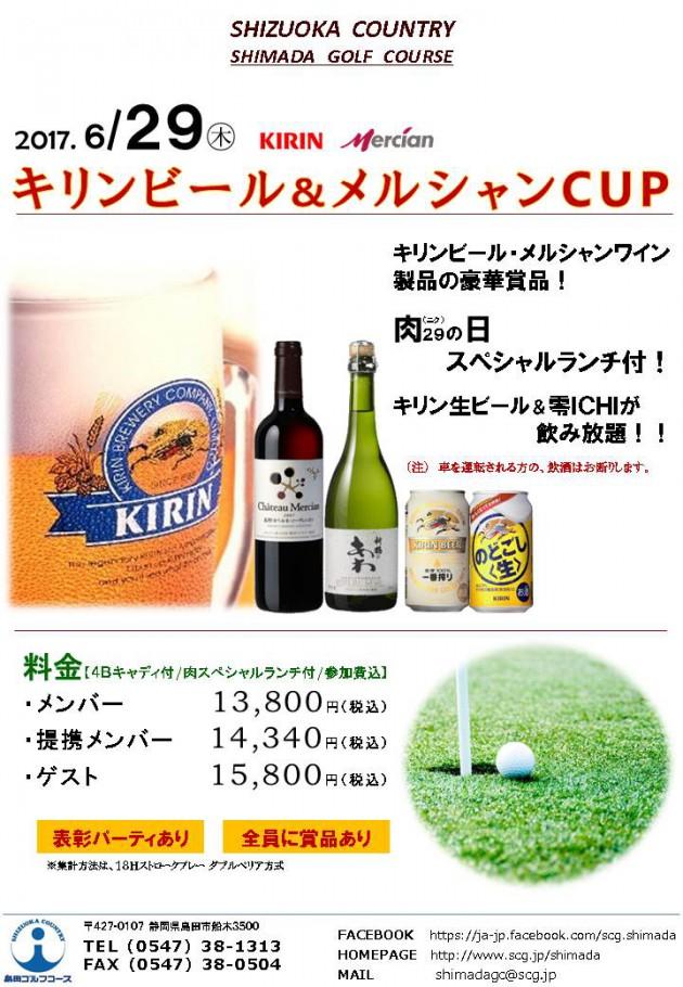 キリンビール&メルシャンカップ